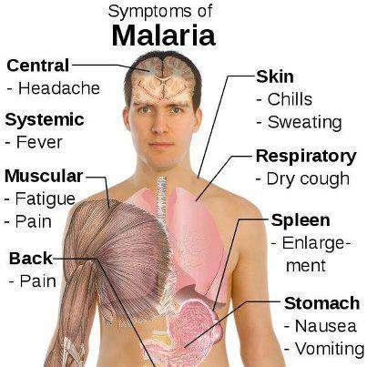 ?! مهلاریا چی یە