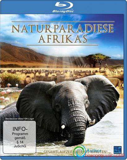 Wildest Africa: Zambesi River of Life 720p 300MB